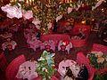 San Luis Obispo, California Madona Inn (10).jpg