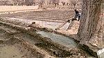 Satpara Irrigation Project (16454099096).jpg