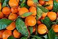 Satsuma mandarins - San Francisco, CA - DSC02398.jpg