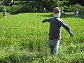 Scarecrow in Yatoyama.jpg
