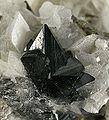 Scheelite-Calcite-206855.jpg