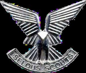 Selous Scouts - Image: Selous Scouts cap badge