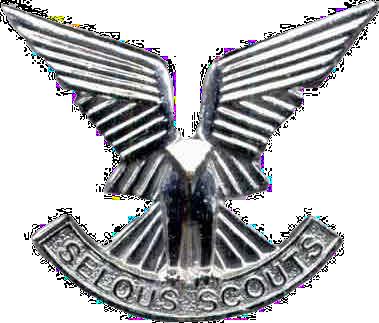 Selous-Scouts-cap-badge