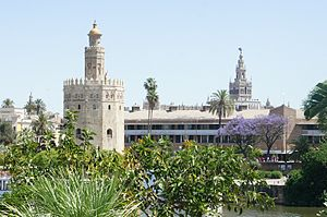 Almohad Caliphate - The Almohads transferred the capital of Al-Andalus to Seville.
