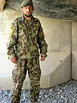 Sgt. Harrimullah Hasim, Helping to save Afghanistan one IED at a time 130601-A-AD523-002.jpg