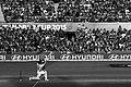 Shane Watson World Cup 2015.jpg