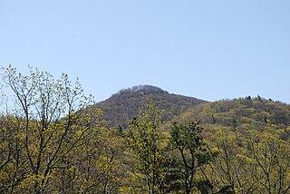 Shenandoah Mountain mountain in Virginia, United States of America