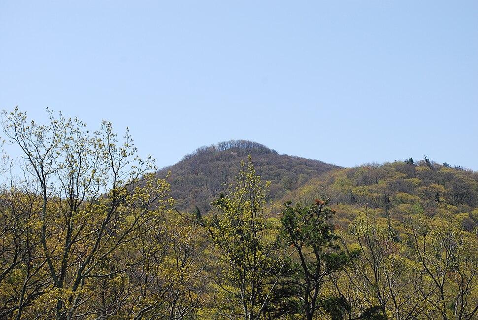 Shenandoah Mountain - High Knob