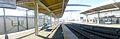 Shinkamagayastation-platforms-jan28-2013.jpg