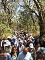 Shrine of Our Lady of Mercy Procession to Grotto.jpg