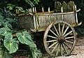 Singapore Zoo -031and (2942644898).jpg