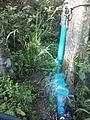 Sistema de riego con bomba de ariete, Pijijiapan, Chiapas 03.jpg