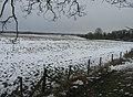 Site of former Roman town - Calleva - geograph.org.uk - 1340914.jpg