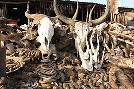 Skulls at Akodessawa Fetish Market 2008
