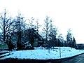 Sneh Tatranská Polianka 17 Slovensko1.jpg