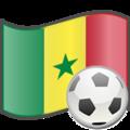 Soccer Senegal.png