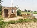 Sonu Kang di Motor, Rolu Majra, Rupnagar, Punjab, 140102, India - panoramio.jpg