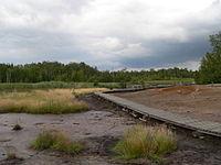 Soos Landscape 0B.JPG