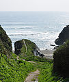 South West Coast Path at Lansallos.jpg
