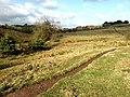 Sow Dale, Old Bolingbroke - geograph.org.uk - 583811.jpg
