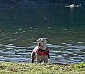 Squaw Lakes, OR (DSC 0181).jpg