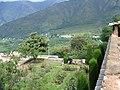 Srinagar - Nishat Mughal Gardens 24.JPG