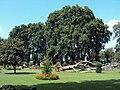 Srinagar - Shalimar Gardens 51.JPG