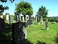 St. Wendel Judenfriedhof 3.JPG