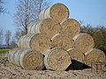 Stack of round haybales - geograph.org.uk - 392928.jpg