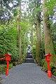 Stairs - Hakone-jinja - Hakone, Japan - DSC05736.jpg