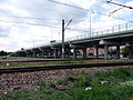 Stalowa Wola - wiadukt w ciągu ul. K.E.N. (3).jpg