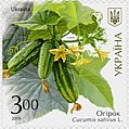 Stamp of Ukraine s1527.jpg