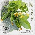 Stamp of Ukraine s1527.jpg