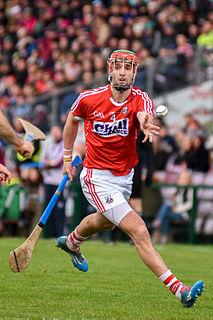 Stephen McDonnell (hurler) Irish hurler