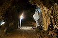 Sterkfontein Caves 42.jpg