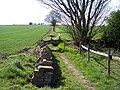 Stile on path to the Prince William - geograph.org.uk - 1262107.jpg