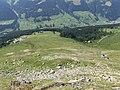 Stn. Jatzmeden-Rinerhorn and Bergstation Juonli as seen from Rinerhorn.jpg