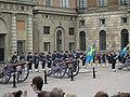 Stockholms slott vaktavlösning 2.JPG