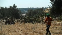 קובץ:Stone throwing Nilin.webm