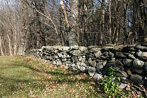 Description: Photograph of a rock fence taken ...