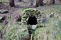 Studánka pod Komářím vrchem (2).jpg