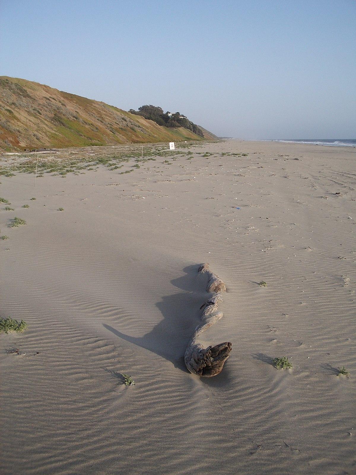 Sunset State Beach - Wikipedia