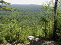 Superior Hiking Trail lookout mtn.jpg