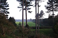 Supposed UFO landing site - Rendlesham Forest - geograph.org.uk - 263104.jpg