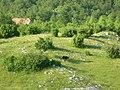 Tadica kraj - panoramio.jpg