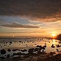 Tallinn (34132182404).jpg