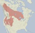 Tamias minimus distribution map.png