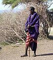 Tanzania1 177 - Flickr - gailhampshire.jpg