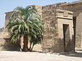 Temple of Ramses III (2428276327).jpg