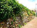 Teneriffa – Mercedeswald – Anaga - Las Carboneras – - panoramio.jpg